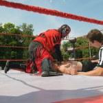 Постер, плакат: Professional wrestling