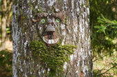 Portrait of the hobgoblin on the tree — Foto de Stock