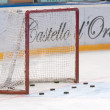 Stock Photo: Goalie gate and hockey pucks