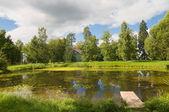 Viejo estanque — Foto de Stock
