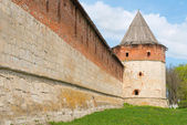 Historical town Zaraysk in Russia, tower of medieval fortress (K — Stock Photo