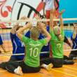 Sitting volleyball — Stock Photo #47155849
