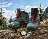 双远足靴与罗盘在倒下的树 — 图库照片