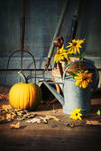Garden shed with tools, pumpkin and flowers — Stock Photo
