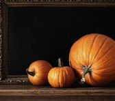Different sized pumpkins on table — Stock Photo