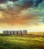夏の終わりの草原穀物サイロ — ストック写真