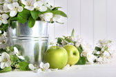 Green apples with blossoms on table — Stock Photo