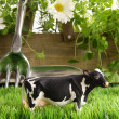 Spring herbs and flowers in the grass with toy cow — Stock Photo
