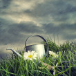 Watering can with flowers in a summer rain - Stock Photo