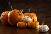 Pumpkins and gourds on table — Stock Photo