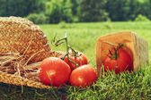Fresh picked tomatoes with garden hat on grass — Stock Photo