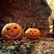 Halloween pumpkins on rocks with leaves and berries — Stock Photo