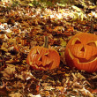 Stock Photo: Funny pumpkins in leaves on the ground