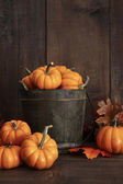 Small pumpkins in wooden bucket on table — Stock Photo