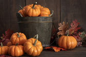 Tiny pumpkins in wooden bucket on table — Stok fotoğraf