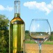 Empty glass with a bottle of white wine against blue sky — Stock Photo #3278156