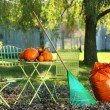 Pumpkins on the table — Stock Photo #3286543