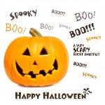 Pumpkin with halloween phrases on white — Stock Photo #3293200