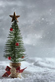 Little tree with snowy background — Stock Photo