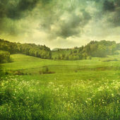 Summer landscape with vintage color filters — Stock Photo