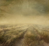 Prairie grasses with vintage color filters — Stock Photo
