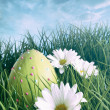 Easter egg on in grass with bright spring sky — Stock Photo