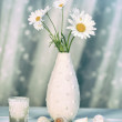 Summer daisies in vase — Stock Photo