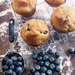 Blueberry muffins on baking rack — Stock Photo #50526747