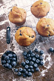 Blueberry muffins on baking rack — Stock Photo