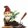 Garden gnome and tools for spring planting — Stock Photo #9541340
