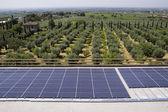 Painéis fotovoltaicos — Foto Stock