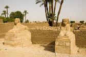 Ancient ruins of Luxor — Foto de Stock