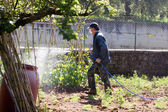 Worker fertilizing garden — Stock Photo
