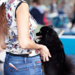 Black spitz standing on its hind legs with a woman — Stock Photo