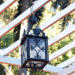 Stock Photo: Decorative lantern hanging in arbor
