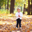 Beautiful little girl in the autumn forest — Stock Photo