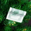 Stack of dollars on the Christmas tree — Stock Photo