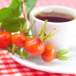 Cup of tea and rosehip berries with leaves on plaid fabric — Stock Photo #16103539