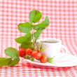 Cup of tea and rosehip berries with leaves on plaid fabric — Stock Photo #16103581