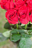 Mooi boeket van rode rozen met water drops — Stockfoto