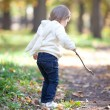 Beautiful little girl with a stick on the autumn forest - Stock Photo