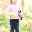Beautiful little girl on the autumn forest — Stock Photo