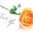 Beautiful orange rose and a card with the words thank you isolat — Stock Photo #21926529