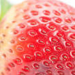 Royalty-Free Stock Photo: Big red strawberry isolated on white
