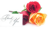 Bouquet of colorful roses and card with the words thank you isol — Stock Photo