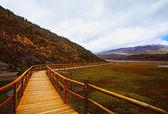 Ponte di legno con vista sul vulcano cotopaxi — Foto Stock