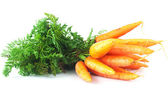 Bunch of carrots with green leaves isolated on white — Stock Photo