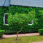 Yeşil ağaçlar ile küçük Şapel — Stok fotoğraf