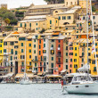 Portovenere harbor — Stock Photo