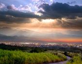 Golden Mang grass and sunset, Taiwan — Stock Photo